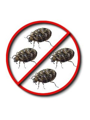 Crawling Insects Killer | Pest Control