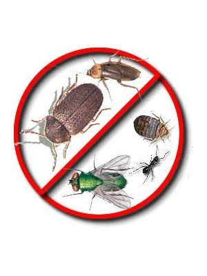Insecticide & Insect Killer | Pest Control