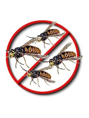 Flying Insect Killer | Pest Control