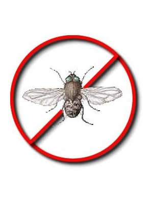 Cluster Fly Killer Spray and Powder
